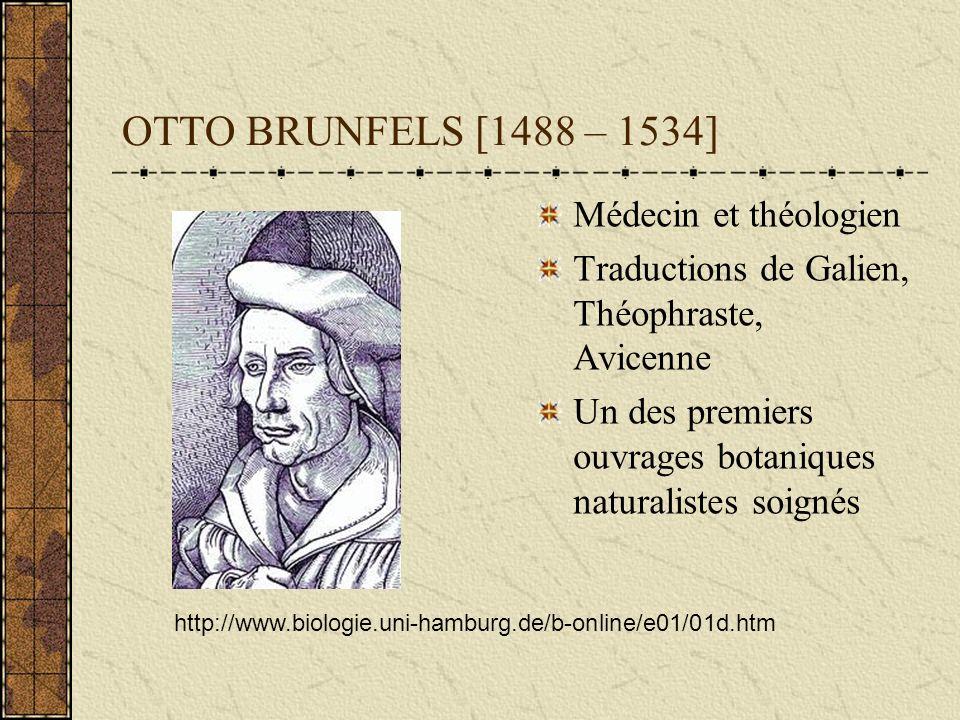 OTTO BRUNFELS [1488 – 1534] Médecin et théologien
